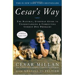 Cesar Millan The Dog Whisperer